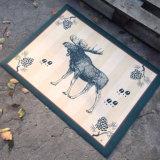 Entwerfer-dekorative schöne Foto-Bild-Abbildung-Sublimation-Wärmeübertragung-Silk Digital-Zoll-3D gedruckte Fußmatten