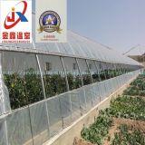 野菜に植わることのためのプラスチックフィルムの太陽温室