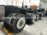 Brushless Generators die aan de Generator van de Macht worden gekoppeld