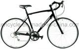 [700ك] 24 سرعة طريق درّاجة /Versatile طريق درّاجة لأنّ بالغة درّاجة [&ستثدنت/سكلوكروسّ] درّاجة/طريق يتسابق درّاجة/أسلوب حياة درّاجة/مسافر يوميّ درّاجة/يختصّ طريق درّاجة