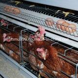 Gabbia della strumentazione del pollame del pollo di strato dalla Cina