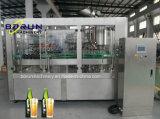 3000bphガラスビンビール満ちる生産ライン