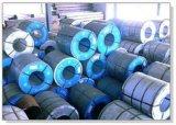 SGCC strich Galvanlume Stahlringe, PPGL Ringe vor