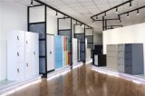 사무실 사용 2 회색 색깔 2 라인 문 금속 수납장