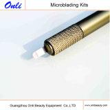 Het nieuwste Zonderlinge Werktuig van de Pen Microblading van het Roestvrij staal Hand