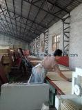 Pappel-Furnier-Blattgesicht und rückseitiges Pappel-Kern-Furnierholz