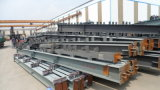 Construção de aço Pre-Projetada vertida (SSW-14350)