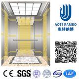 Aote Vvvf profissional conduz para casa o elevador da casa de campo (RLS-207)