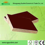 Shuttering Plywood/Construction Formwork Film Faced Plywood