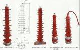 PLASTIK-Blitzableiter China-(YH5W-12) Hochspannungs- China-Überspannungsableiter, Stromstoss-Überspannungsableiter