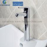 浴室のために承認されるセリウムが付いている従来のシャワーのミキサー