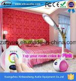 GroßhandelsBluetooth Lampe des China-Lautsprecher-LED mit 3000k/6000k CCT