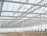 Venloのタイプ温室のためのHot-DIP電流を通された鉄骨構造