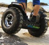 Vehículo eléctrico de la vespa de la rueda del motor de la potencia