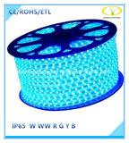 luz de tira flexible al aire libre de 120V IP65 LED con la certificación de ETL