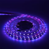 5050 tira colorida de los 60LED/M RGB 12V LED