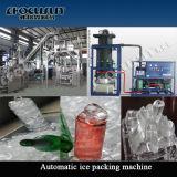 Máquina de gelo nova do tubo de África do projeto de Focusun 20ton com a máquina de ensaque automática do gelo