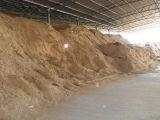 Un carbonio attivato polvere a base di legno delle 325 maglie per decolorazione