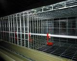 Изготовление клетки слоя бройлера/клетки цыпленка с автоматической системой
