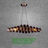 新しいデザインポストモダンの装飾はつけるレストランのペンダント灯(GD-7432-1L)を