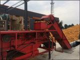Máquina de todo el sistema de control automático de cacahuete Secadora
