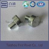 ribattino d'acciaio solido capo piano dello zinco bianco di 11X12mm