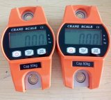 Lcd-Bildschirmanzeige-Digital-wiegende Schuppe mit der Kapazität 100kg/200lb
