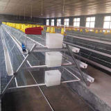 Клетки курятника цыпленка для оборудования цыплятины курицы слоя