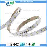 striscia non-impermeabile dell'indicatore luminoso LED della decorazione di festa di 12W/M