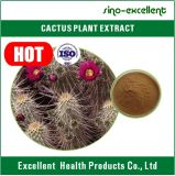Extrait de cactus de poudre de surveillance du poids