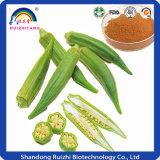 Estratto cinese del gombo delle erbe per il diabete dell'ossequio