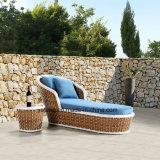 Nuova mobilia dell'hotel Using il salotto esterno del Chaise del giardino con la Tabella laterale (YTF1050&YTE1050-1)