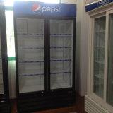 음료를 위한 고명한 압축기를 가진 2개의 유리 문 강직한 냉각기