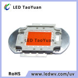 LED Light para pecuária 30-50W Spectrum completo 380-840nm