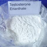 Testosterona sin procesar Enanthate de la potencia de la pureza del 99% para el ciclo que abulta