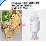 Самый лучший продавая CAS: 519-02-8 белый порошок Matrine
