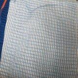 Blaues dehnbares HDPE gestrickte Obstbaum-Netze