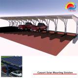 Qualitäts-Aluminiumzelle-Autoparkplatz-Installationssätze (GD886)