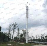 튼튼한 직류 전기를 통한 옥외 거리 조명 폴란드
