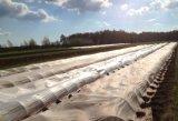 Tessuto del Non-Woven di agricoltura