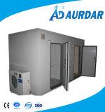 Caminata de la alta calidad en el refrigerador de la cámara fría para la venta