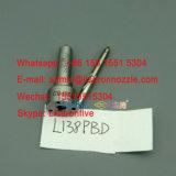 L138pbd元のデルファイの燃料噴射装置のノズルL138prd Ssangyong D27dt 2.7L Ejbr02601z Ejbr04601d