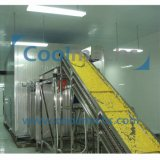 Congelatore ad aria compressa commerciale per il congelatore a letto fluidizzato di getto di aria di prezzi