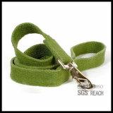 material verde respetuoso del medio ambiente del bambú del correo del perro de los 4FT