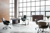アーム(HT-875A)を搭載するよく熱い販売のオフィスの椅子