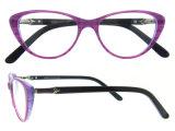 De Glazen van Eyewear van de Ontwerper van het Frame van het Oogglas van de Acetaat van het Oog van de Kat van de manier met Ce en FDA