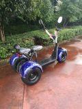 1000W60V voor AchterOpschorting Nieuwe Harley 3 de Autoped van het Wiel