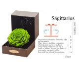 Ivenran preservó la flor fresca del rectángulo de regalo del sagitario