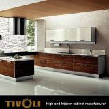 De keukenkast met het ontwerp van Morden van de Luxe voor de Bouwers en Ontwikkelaars tivo-0088h van het Huis