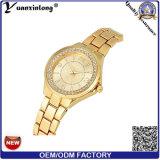 Relojes del asunto de las señoras de los hombres de acero del reloj del acoplamiento Yxl-483 del oro ocasional de lujo de la venda